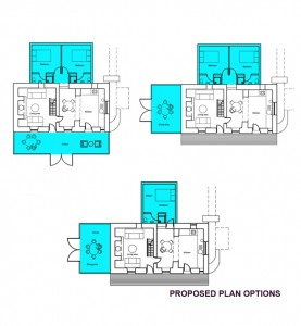 Proposed plan options